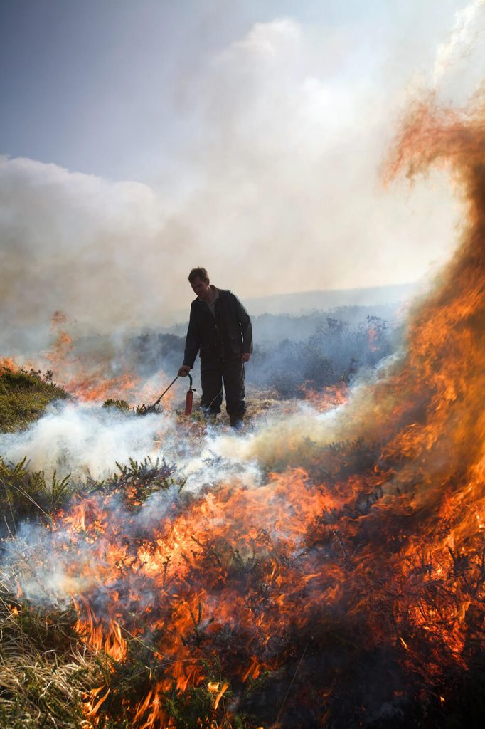 Swailing amongst the flames in Dartmoor National Park