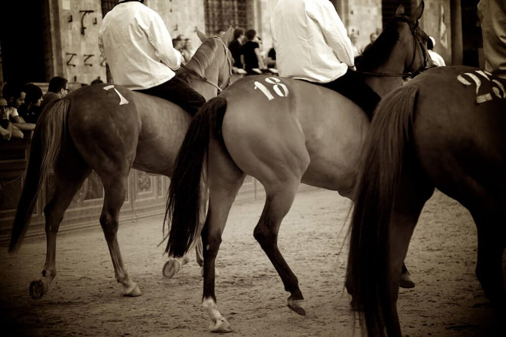 Horses and riders taking part in the Il Palio di Siena